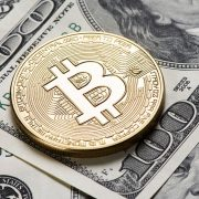 Bitcoin vs Forex, which one is better for trading?